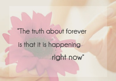 sarah dessen the truth about forever.jpg